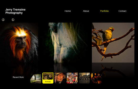 Wix Photography Website Review