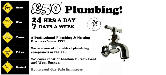 50-Plumbers' website was created with a Wix.com Flash website