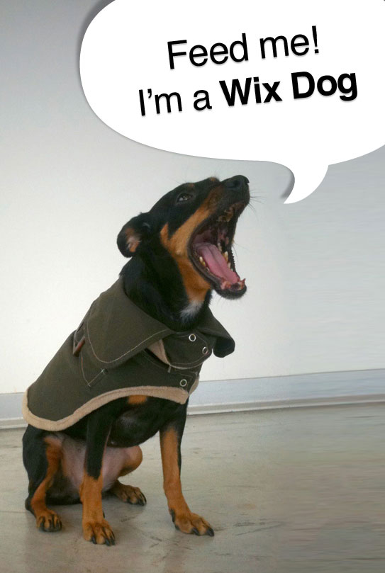 "Wix Dog with speech bubble ""Feed me! I'm a Wix Dog"""