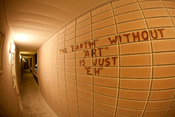 """""""Earth without art"""""""
