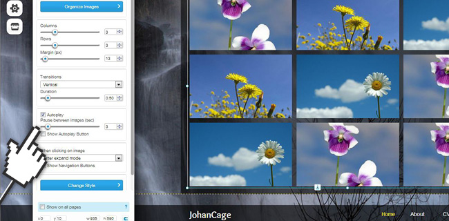 Design a Dynamic Homepage with Animated Gallerie