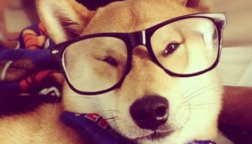 glasses22