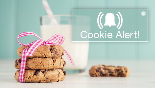 Introducing: Cookie Alter Pop-up to Comply with EU Law