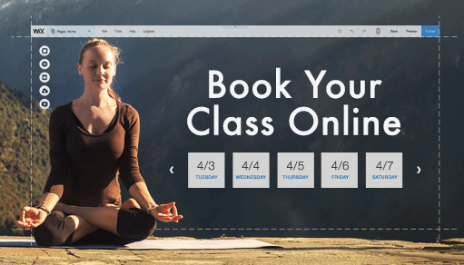 10 Types of Businesses That Use Wix's Online Bookings System